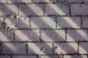 Bricks-petruzzo-photography